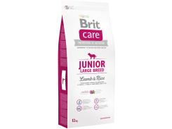 Сухой корм для щенков и молодых собак крупных пород Brit Care Junior Large Breed Lamb & Rice с ягненком и рисом 12 кг (8595602509836)