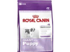 Сухой корм Royal Canin Giant Puppy для щенков гигантских пород до 8 месяцев 15 кг (3182550707046)