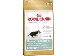 Сухой корм Royal Canin German Shepherd Junior для щенков до 15 месяцев 12 кг (3182550724159)