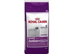 Сухой корм Royal Canin Giant Junior Active для щенков гигантских пород с высокими энергетическими потребностями старше 8 месяцев 15 кг (3182550779456)