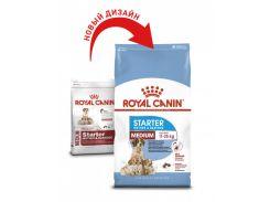 Корм Royal Canin Medium Starter для сук в последней трети беременности и в период лактации, 12 кг