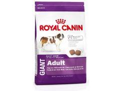Корм для взрослых собак Royal Canin Giant Adult, пород крупных размеров, 15 кг