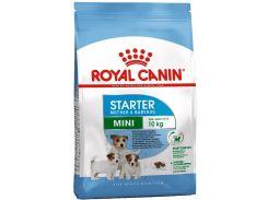 Корм Royal Canin Mini Starter для сук маленьких размеров в период беременности и лактации, 8.5 кг