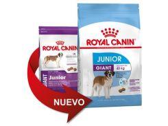 Корм для щенков Royal Canin Giant Junior, крупных пород, 15 кг