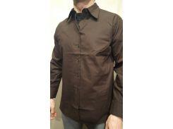 Рубашка мужская  коричневый, 1