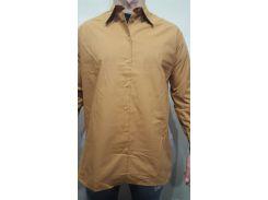 Рубашка мужская  горчичный, 4
