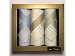 Набор мужских носовых платков Mileta Lux (3 шт.) (3324)