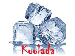 Добавка к жидкостям Koolada (Холодок) TPA (США) пробник 1 мл