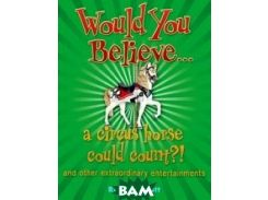 A Circus Horse Could Count?!