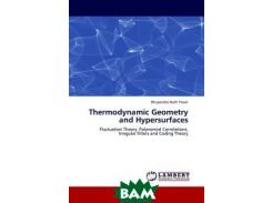 Thermodynamic Geometry and Hypersurfaces