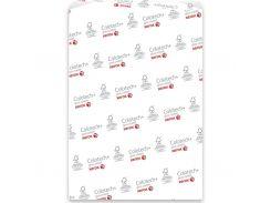 Бумага XEROX A4 COLOTECH + GLOSS (003R90342)