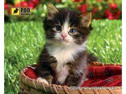 Килимок PODMYSHKU кошеня в корзині