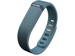 Fitbit Flex (Slate)