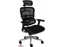 Кресло Comfort Seating ERGOHUMAN PLUS Эргономичное