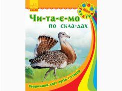 Моя Україна. Читаємо по складах : Тваринний світ лугів і степів (у)(17.5)