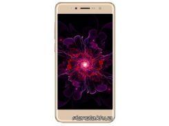 Мобильный телефон Nomi i5050 EVO Z Gold