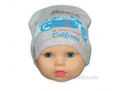 Детская шапка Мото Габби 00650 46 - 48
