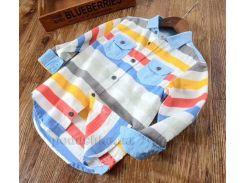 Рубашка с длинными рукавами для мальчика Okkoai 78484 белая в полоску размер 94
