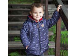 Куртка для мальчика Bembi КТ169 плащевка с утеплителем 68 цвет серый