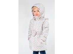 Куртка демисезонная в горошек Модный карапуз 03-00642_86 86