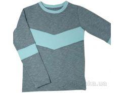 Джемпер для мальчика D&S Спорт 183025 двухнитка 146