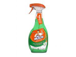 Средство чистящее для стекла профессионал Mr. Muscule с распылителем 500мл зеленый w.00153