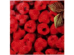 Декор АТЕМ Orly Raspberry W (12492)