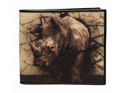 Кошелек Ekzotic leather из натуральной кожи морского ската   (stw 101)