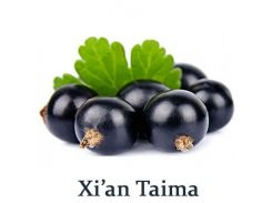 Ароматизатор Xi`an Taima - Black Currant (черная смородина) 1мл