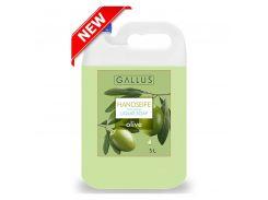 Жидкое мыло для рук Gallus Оливка 5л