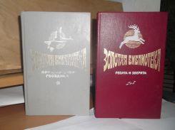 Золотая библиотека для детей. 2 тома. Приключения Гвоздика. Перовская
