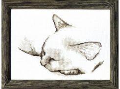 Спящий котик ВТ-071