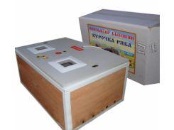 Инкубатор Курочка Ряба ИБ-60 автомат цифр. усилен