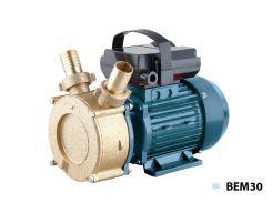 Электронасос для дизельного топлива Насосы + BEM30