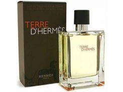 Hermes Terre De Hermes EDT 100 мл (Турция)