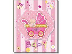 Альбом EVG 10x15x200 BKM46200 Baby car pink