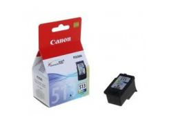 Картридж  CANON (CL-513) для CANON Pixma MP240/250/260/270/272/280/490/492/495/MX320/330 Color