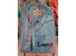 Рубашка детская, подростковая Lagard длинный рукав. Голубая+манжет