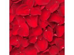 ИСКУССТВЕННЫЕ ЛЕПЕСТКИ РОЗ, 5*5 см красный