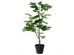FEJKA Искусственное растение в горшке, смоковница