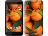 Цены на Чехол на HTC Desire 320 Мандар...