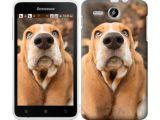Цены на Чехол на Lenovo A529 Dogs nose...