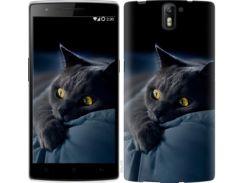 """Чехол на OnePlus 1 Дымчатый кот """"825u-379"""""""