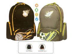 Рюкзак (ранец) школьный TIGER FAMILY 8503