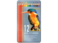Карандаши цветные 12кол. Bruynzeel Bird в метал. коробке 8511M12
