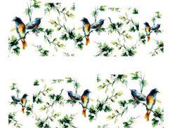 Фото-дизайн 0046 Птичка на дереве