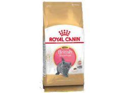 Сухой корм для котят Royal Canin British Hair Kitten (10 кг)