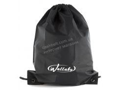 Спортивный мужской рюкзак для сменки WALLABY art.  2825 черный