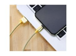 Дата кабель USB 2.0 AM to Lightning / Type-c 1.0m Gravity series Magnetic gold Remax (RC-095I-GOLD)