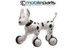 Интерактивная игрушка РОБОТ ROBODOG (Черно-белый)